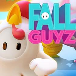 Image Fall Guyz
