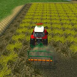 Image Farming Town